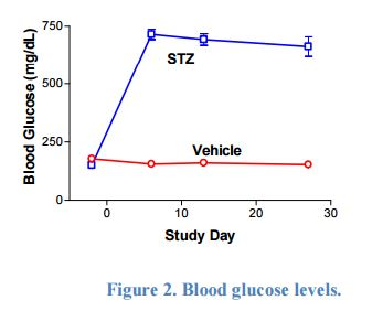 Control glucose was in the range of 153±16 mg/dL range and STZ-treated glucose  levels were consistently in the 765±98 mg/dL range from Week 1-4.